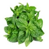BASIL LEAVES (100G Packet)